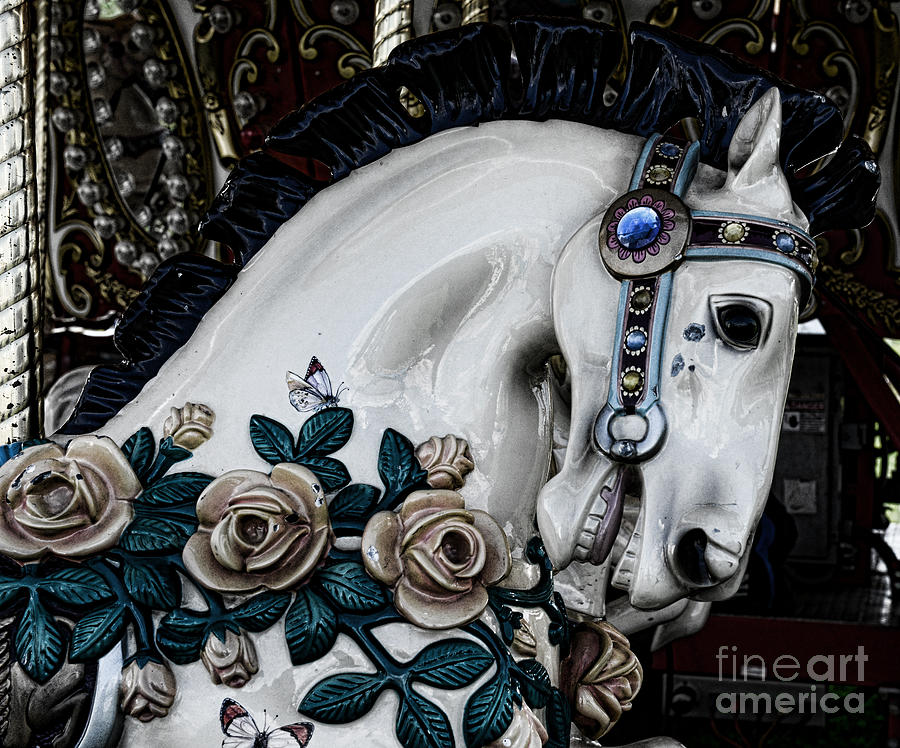 Dark Horse Photograph - Carousel Horse - 8 by Paul Ward