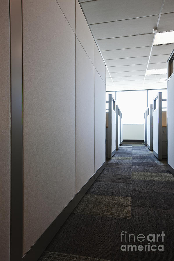 Aisle Photograph - Carpeted Hall With Office Cubicles by Jetta Productions, Inc