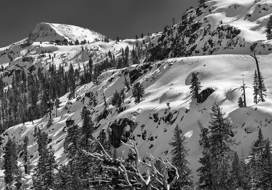 Landscape Photograph - Carson Pass by A A