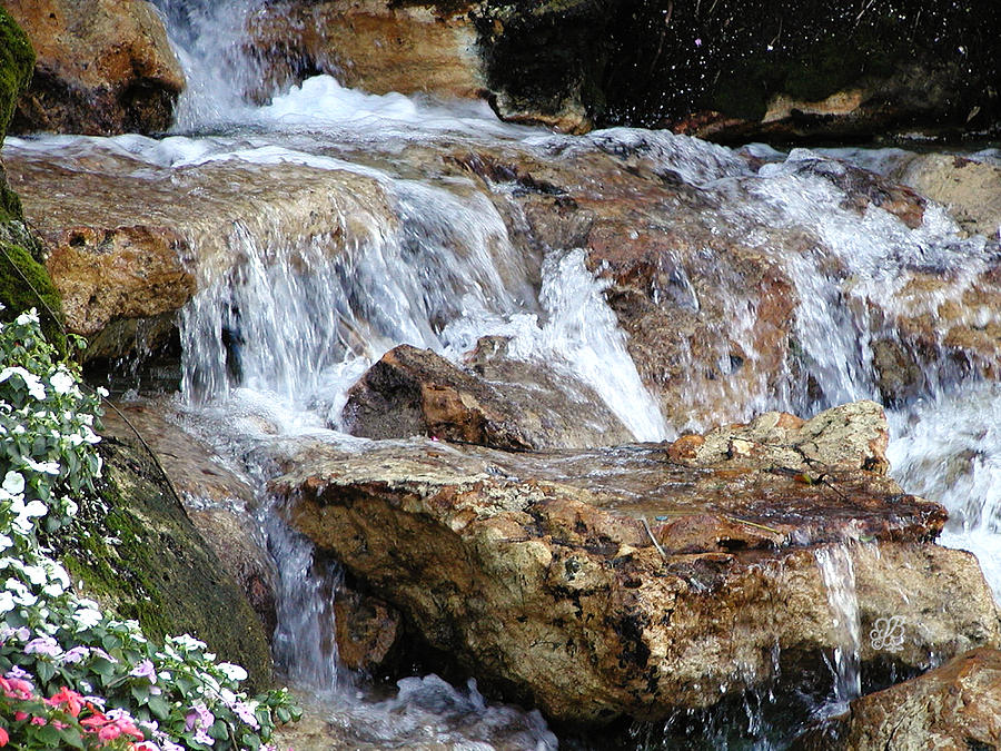 Waterfall Photograph - Cascading Water by Barbara Middleton