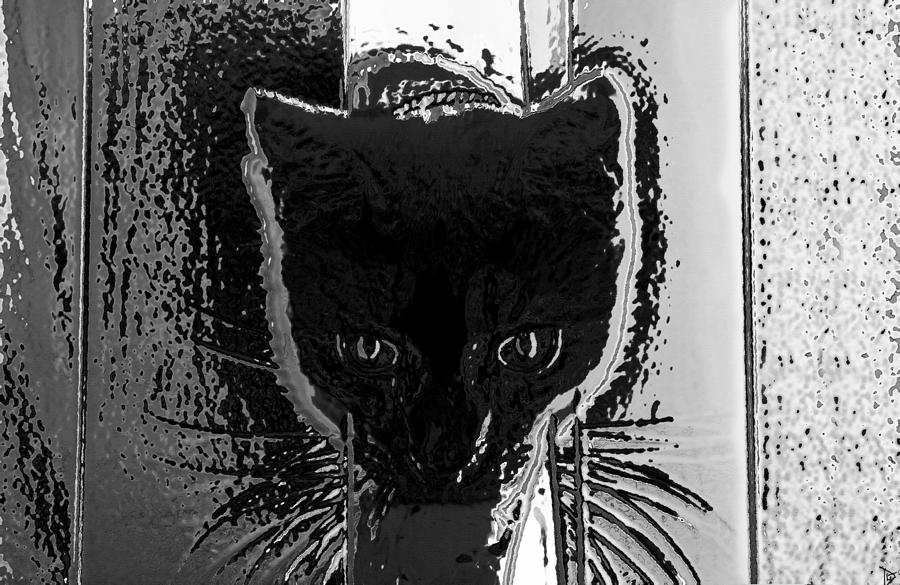 Artwork Painting - Cat Coming In by David Lee Thompson