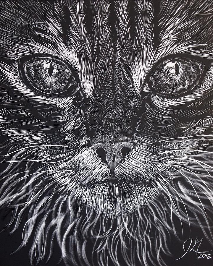 Cat Eyes Drawing By Jenny Greiner