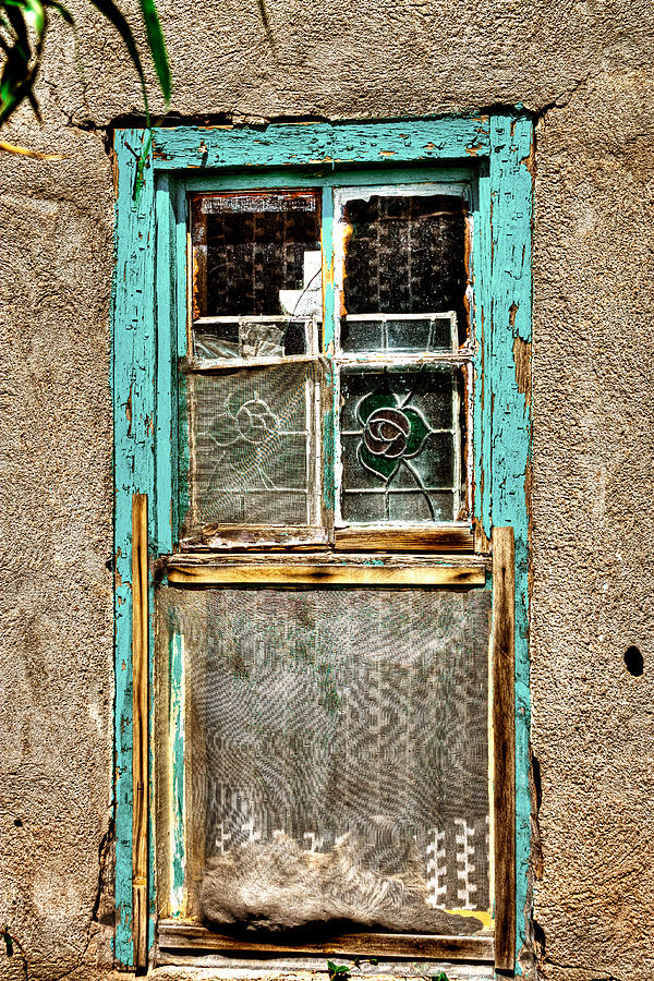New Mexico Photograph - Cat In The Window by David Patterson