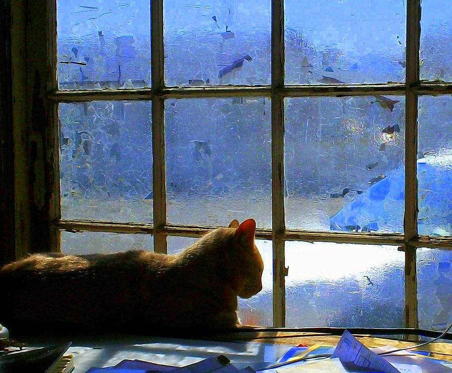 Cat Painting - Cat In The Window by Randall Weidner