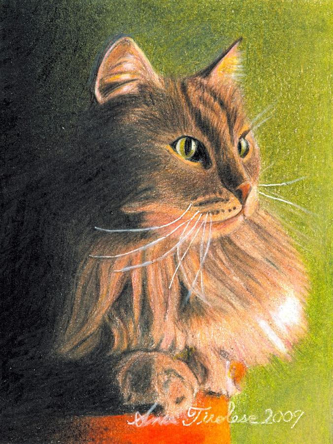 Cat Drawing - Cat Miniature by Ana Tirolese