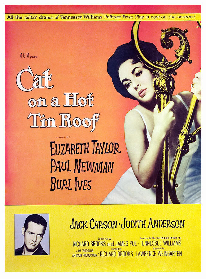 1958 Movies Photograph - Cat On A Hot Tin Roof, Elizabeth by Everett