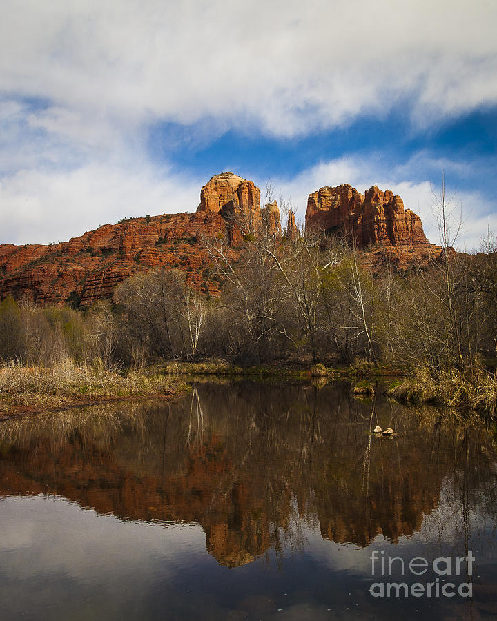Cathedral Rock Photograph - Cathedral Rock Reflections Portrait 2 by Darcy Michaelchuk