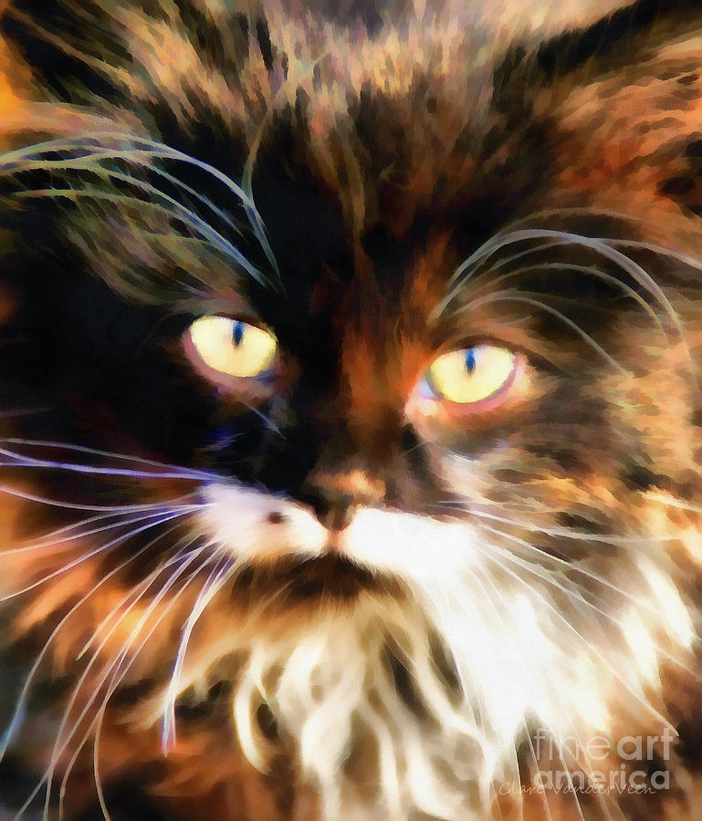 Cat Photograph - Cats Eyes by Clare VanderVeen