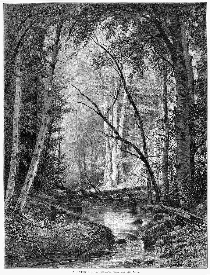 1873 Photograph - Catskill Brook, 1873 by Granger