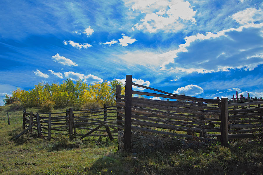 Cattle Chute Photograph - Cattle Chute And Corral by Stephen  Johnson