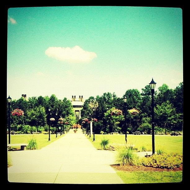 Blue Photograph - #ccu #coasal by Katie Williams