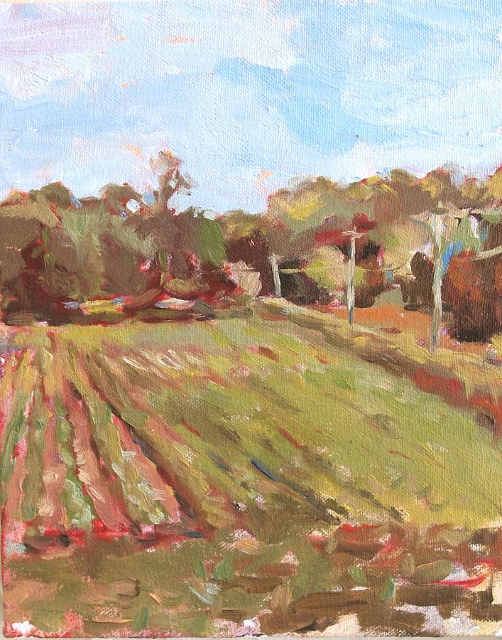 Cedarburg Wisconsin Painting - Cedar Creek Corn by Jenny Anderson