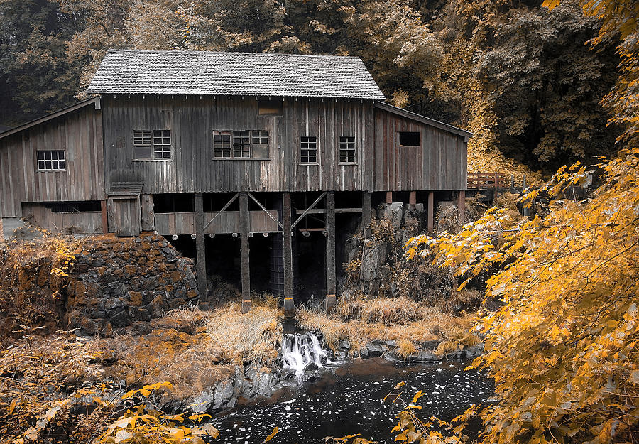 Cabin Photograph - Cedar Creek Grist Mill by Steve McKinzie