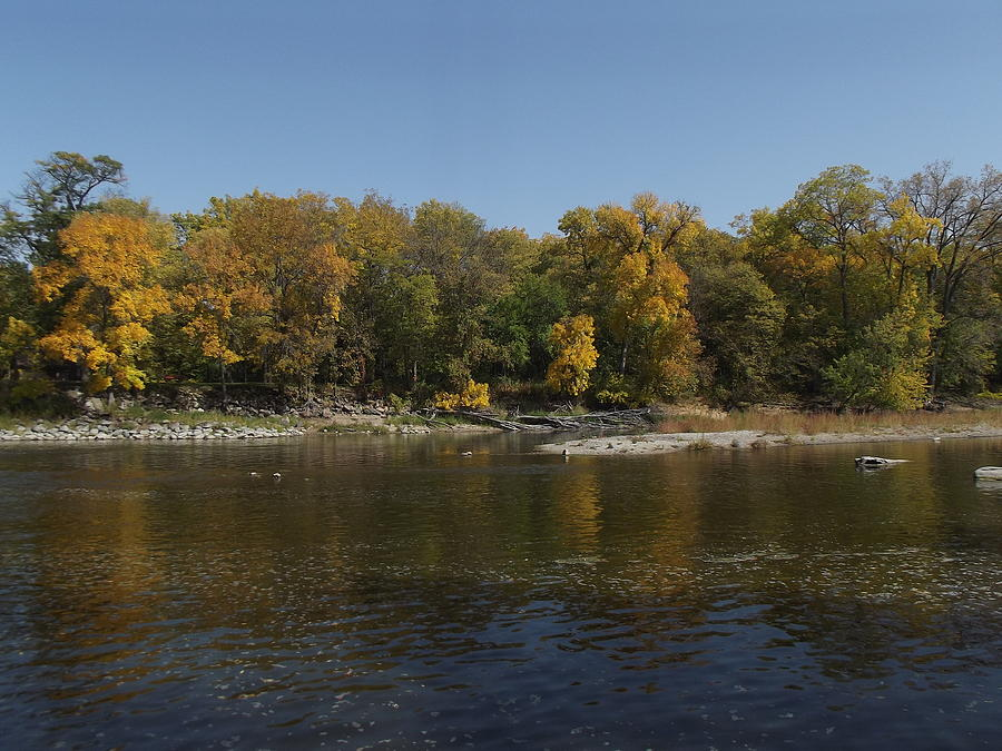 cedar river chat The river passes through austin, minn, and charles city, cedar falls, waterloo, and cedar rapids, iowaits principal tributaries are the little cedar and the shell rock rivers the river is named for the stands of red cedar along its lower course.