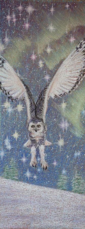 Snowy Owl Pastel - Celestial Swoop by Thomas Maynard