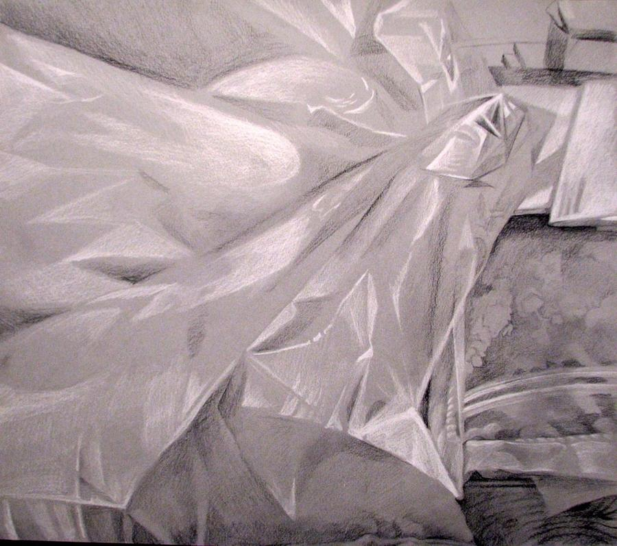 Cellophane Drawing by Julie Orsini Shakher