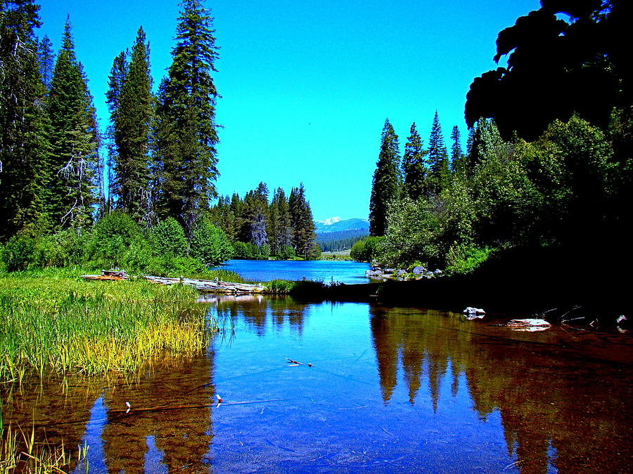 Oregon Photograph - Central Oregon Tranquility  by Nick Kloepping