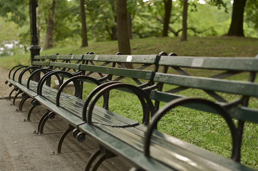 Central Park Bench Photograph By William Carson Jr