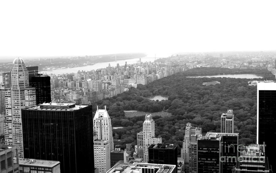 New york city photograph central park in black and white by living color photography lorraine