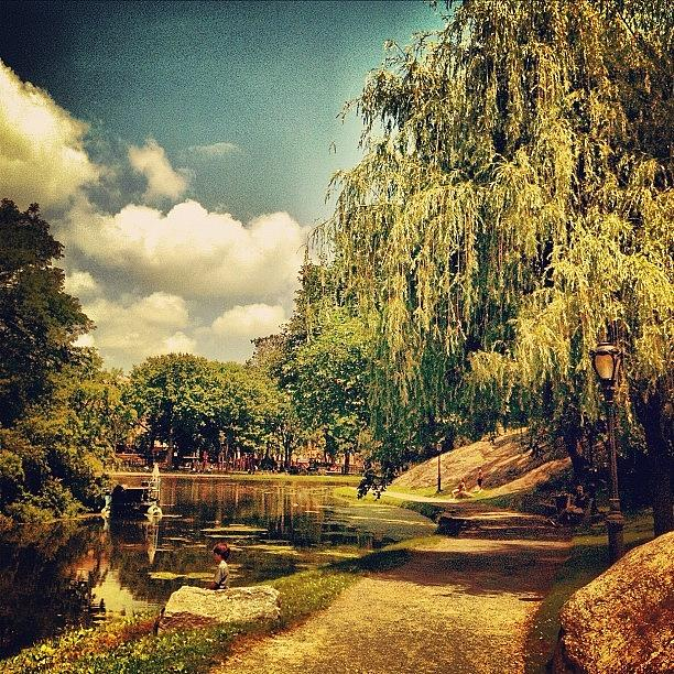 Summer Photograph - Central Park North. #centralpark #nyc by Luke Kingma
