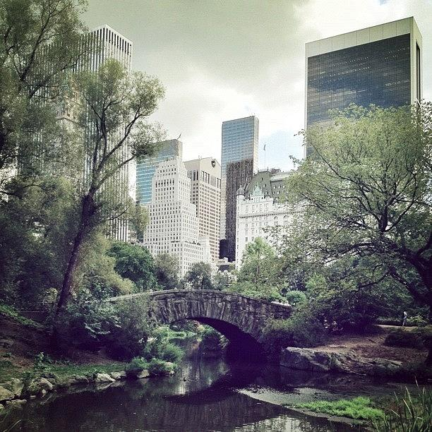 Summer Photograph - Central Park by Randy Lemoine