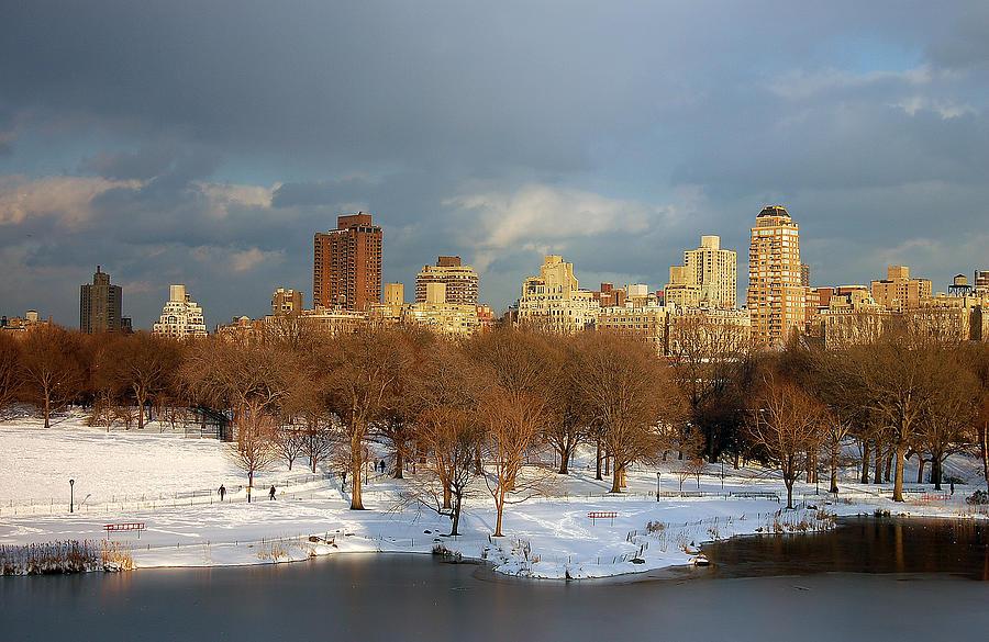 Landscape Photograph - Central Park View by Sarah McKoy