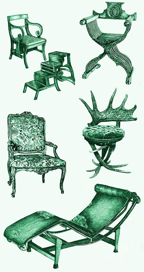 Stag Drawing - Chair Poster In Green  by Adendorff Design