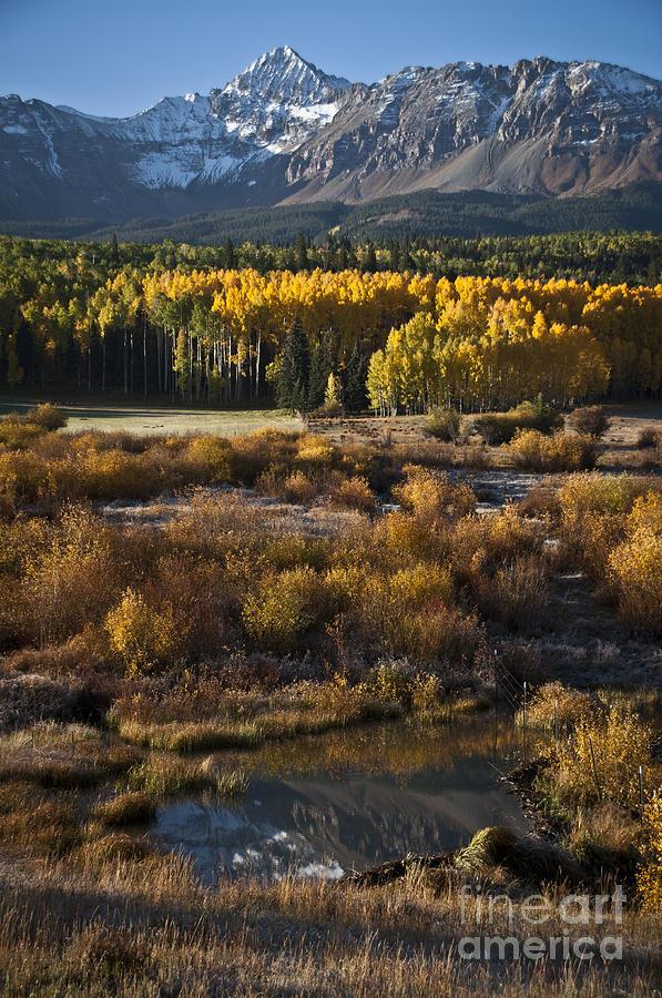 Aspen Photograph - Changing Season by Jeff Kolker