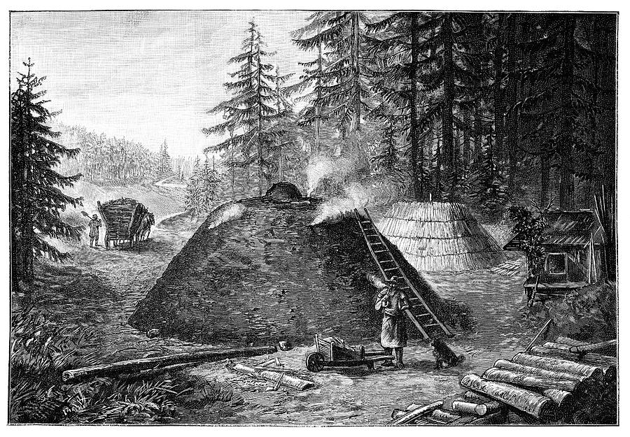 Human Photograph - Charcoal Production, 19th Century by