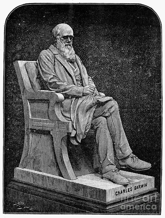 1887 Photograph - Charles Darwin (1809-1882) by Granger