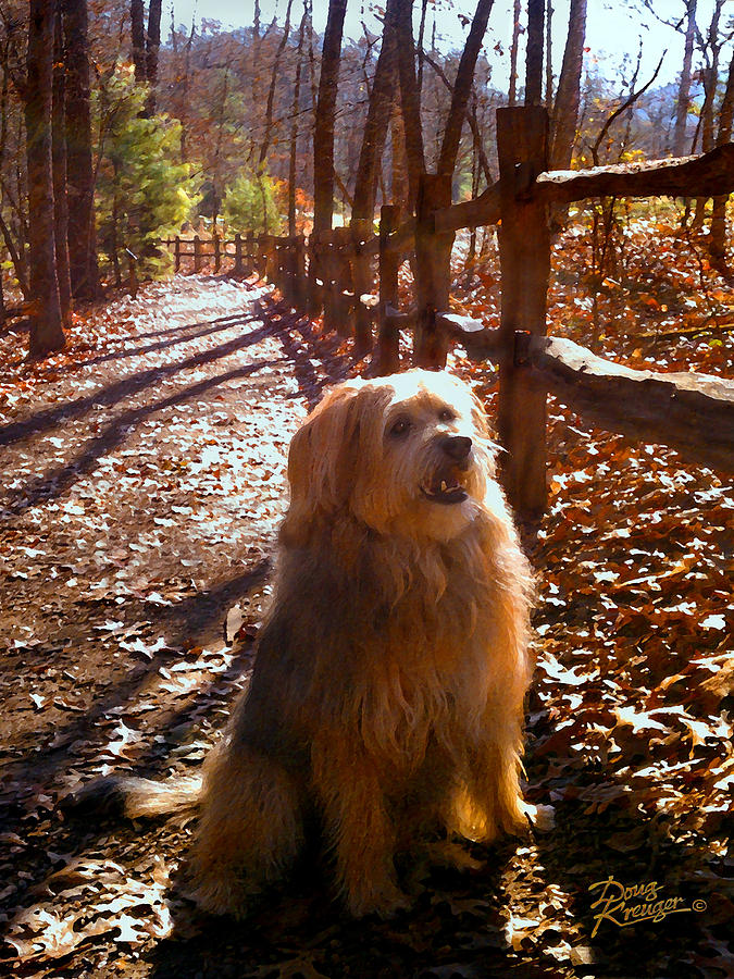 Fall Landscape Paintings Painting - Charlie by Doug Kreuger
