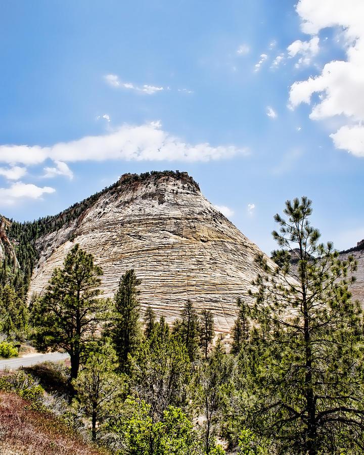 Checkerboard Mesa IMG 9460 Photograph by Torrey E Smith