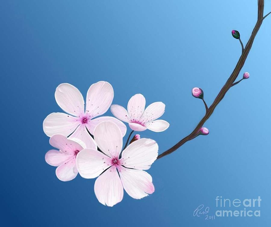 Flowers Painting - Cherry Blossoms by Rand Herron