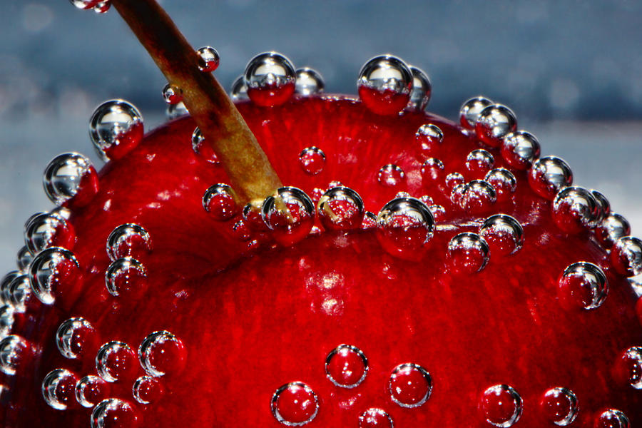 Cherry Cherries Photograph - Cherry Bubbles Under Water by Tracie Kaska