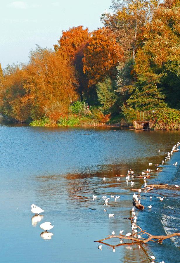 Autumn Landscape Photograph - Chester In Autumn by Bai Qing Lyon