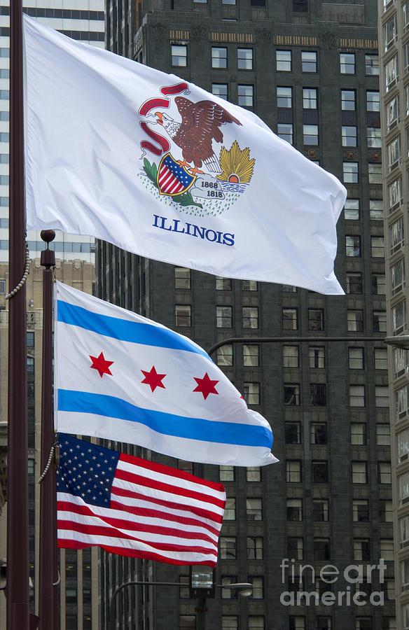 Flags Photograph - Chicago Flags by Ann Horn