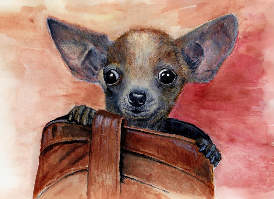 Chihuahua Painting - Chihuahua Puppy by Katerina A Cechova