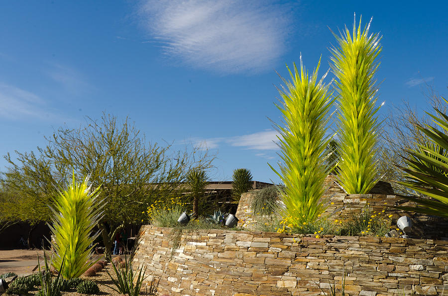 Dale  Glass Phoenix Desert Botanical Garden Photograph - Chihuly In Arizona by Jim Gilbert