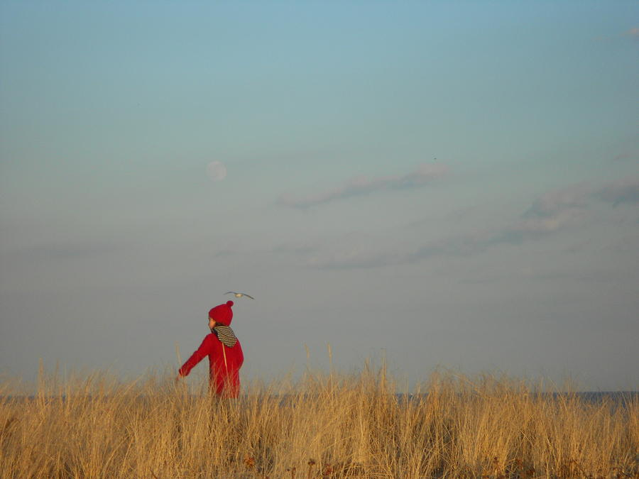 Landscape Photograph - Child On The Dunes by Joe  Burns