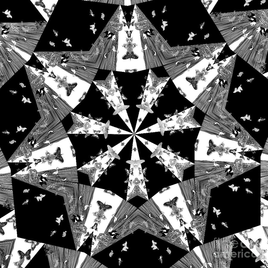 Children Animals Kaleidoscope Black And White Photograph