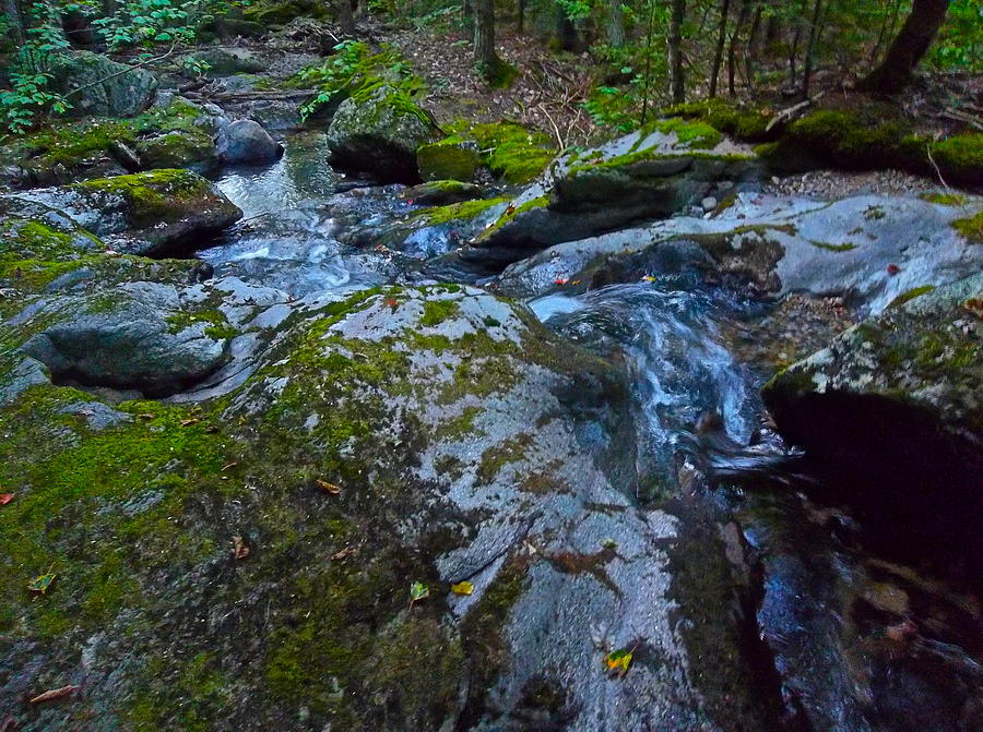 Landscape Photograph - Childs Brook Summer 18 by George Ramos