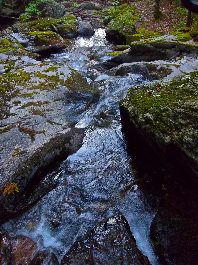 Landscape Photograph - Childs Brook Summer 21 by George Ramos
