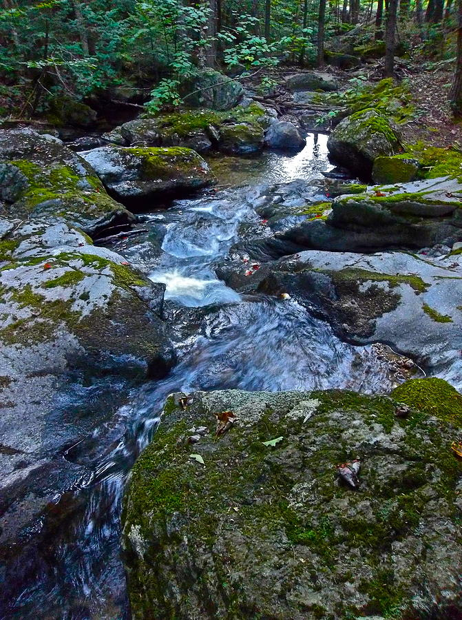 Landscape Photograph - Childs Brook Summer 23 by George Ramos