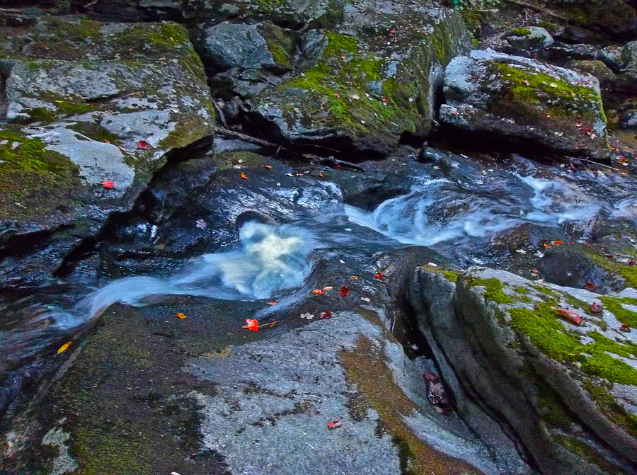 Landscape Photograph - Childs Brook Summer 24 by George Ramos