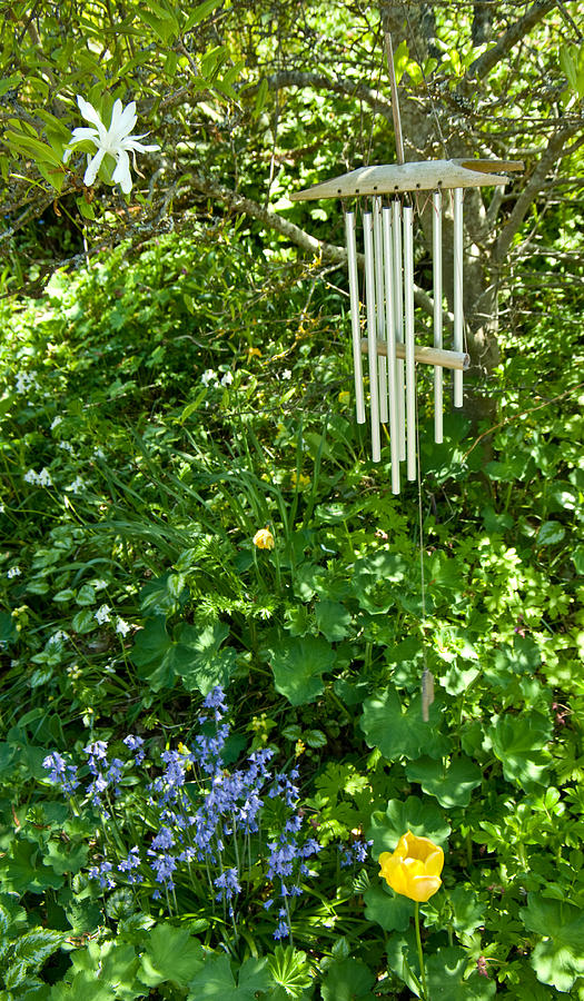 Blue Bells Photograph - Chimes And Bells by Travis Crockart