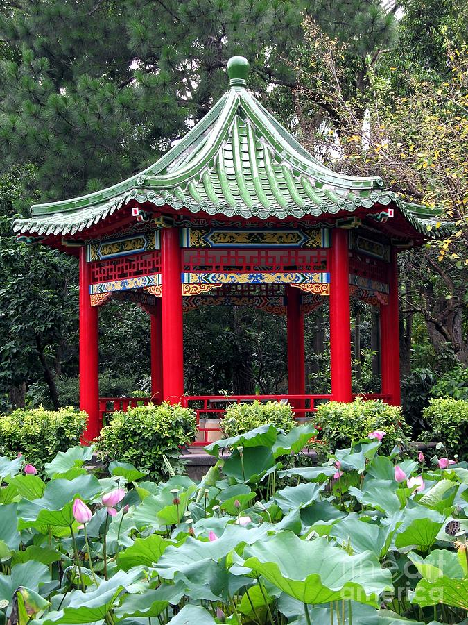 Pavilion Photograph - Chinese Pavilion And Lotus Flowers by Yali Shi