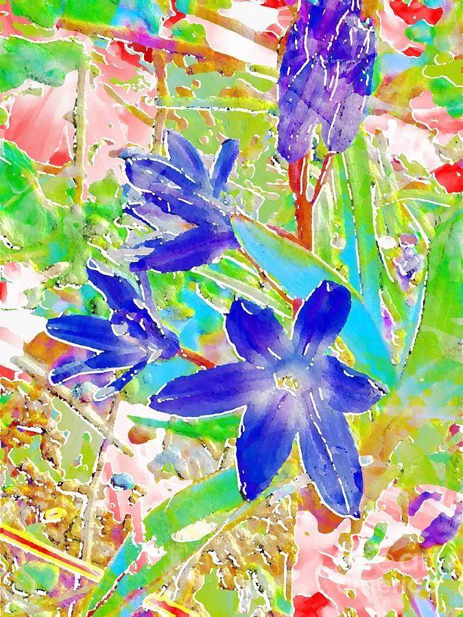 Chionodoxa Photograph - Chionodoxa by Barbara Moignard
