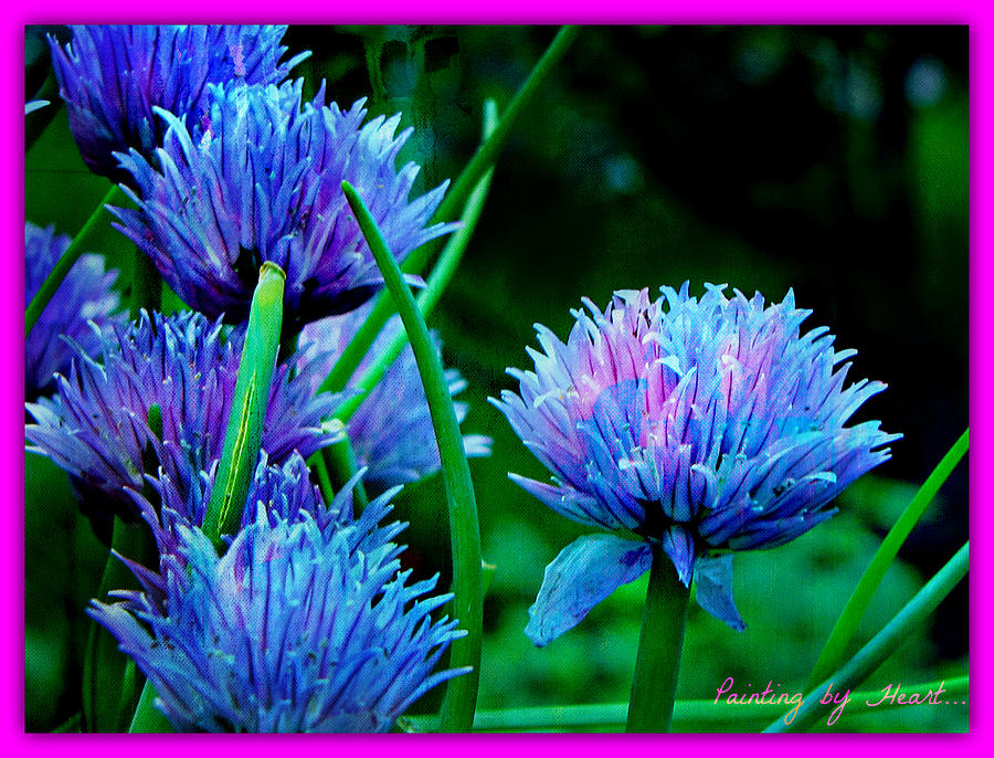 Chives for You by Deahn      Benware