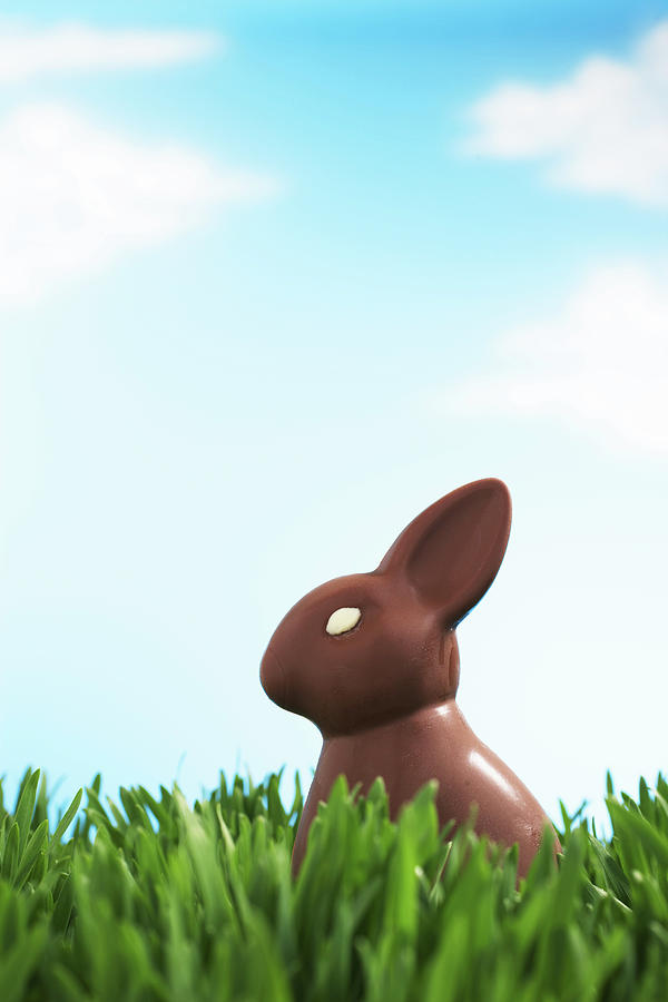 Chocolate Easter Bunny In Grass Photograph by Martin Poole