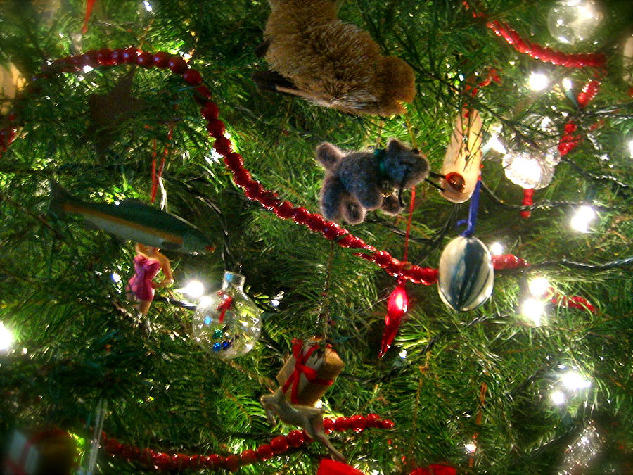 Christmas Photograph - Christmas by Jon Berry OsoPorto